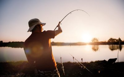 Are You Fishing or Hunting?